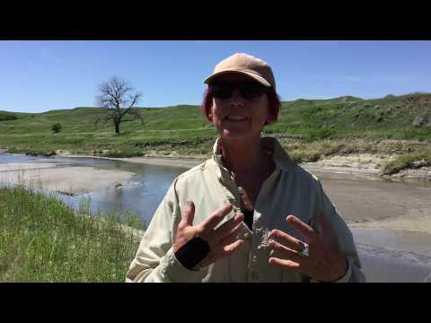 Tribal Research Partnership: Native Environmental Health Equity