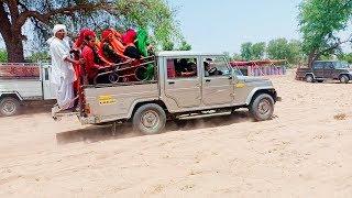 Rajasthani wedding highlights | Rajasthani marriage song | banna banni geet bishnoi wedding