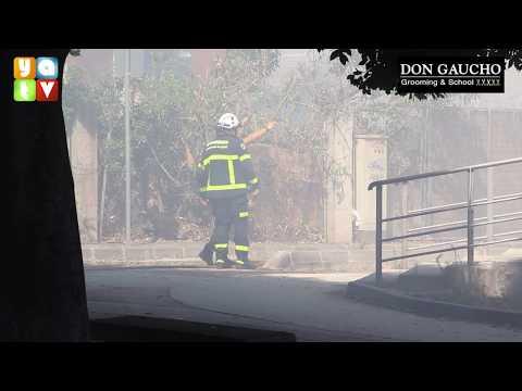 Declarado un incendio en el Paseo de la Cornisa en Algeciras
