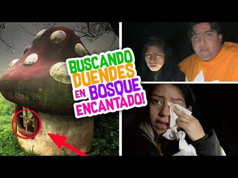 Buscando DUENDES REALES a MEDIA NOCHE en BOSQUE ENCANTADO 🌲Terror Fantástico Vloggeras Fantásticas