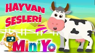 Hayvan Sesleri ŞarkısıEğlenceli Miniyo Şarkıları