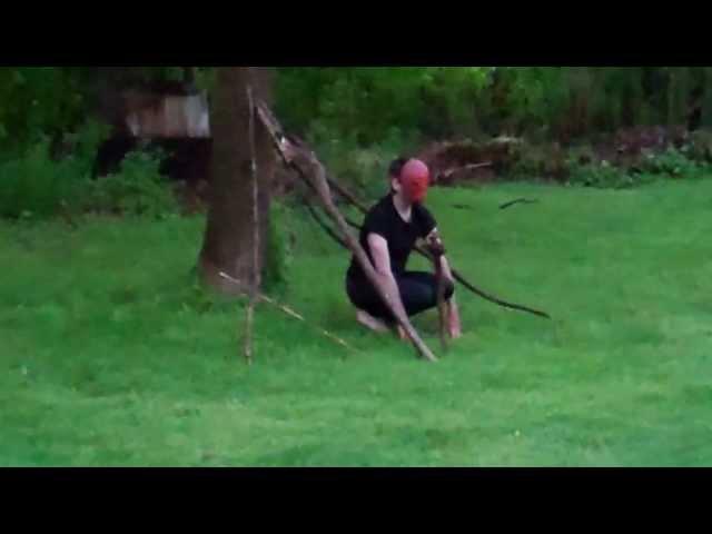 Tree Limbs Monkey Performance