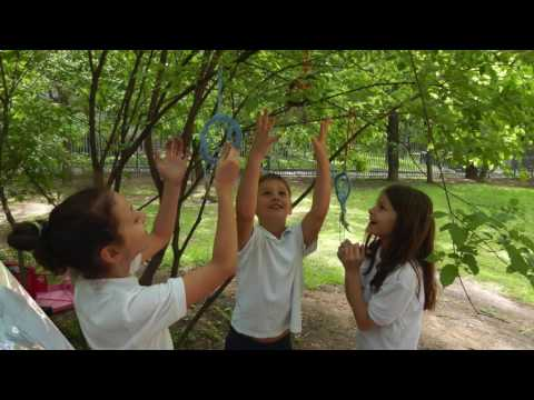 Year 5 and 6 Review of the School Year 2016/2017