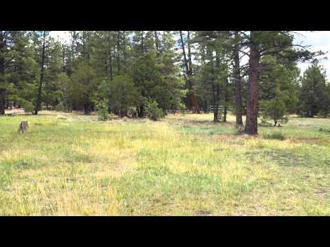 Top of the Pines 2014-Pinetop AZ - PLAYLIST
