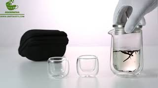 Double Wall Glass Travel Tea Set With Bag