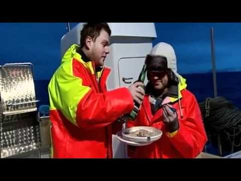 Fishing For Wolf Fish In Iceland - Heston Blumenthal