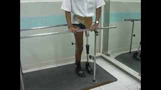 Prótese modular p/ desarticulação do quadril-Ortopedia Americana