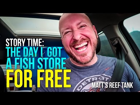 The DAY I Got A FISH STORE For FREE