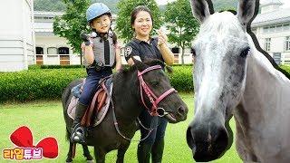 [체험]라임 경주말을 타보다! 소노펠리체승마클럽 어린이 애완동물 고품격 승마체험하다 horse riding 대명비발디파크 | LimeTube & Toy 라임튜브