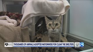 Thousands of animals adopted nationwide for Clear the Shelters