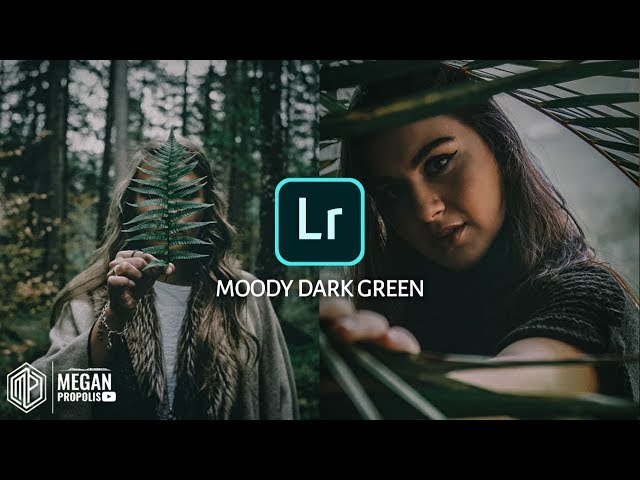 Lightroom CC Mobile Tutorial Moody Dark Green Android