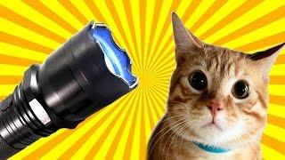 5 ЛАЙФХАКОВ С ШОКЕРОМ на что способен электрошокер(Шокер очень полезная штука! Он годится не только для самообороны. Электрошокером можно легко вывести из..., 2016-09-30T14:05:36.000Z)