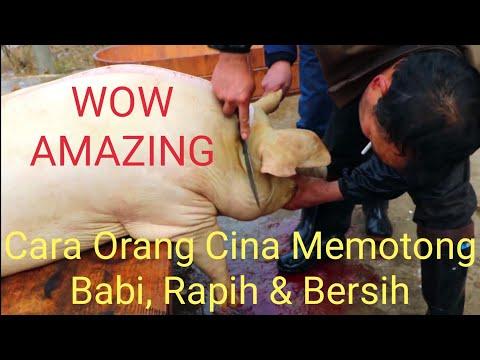 Begini Cara Memotong Babi Di Cina, Rapih & Bersih