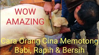 Begini Cara Memotong Babi di Cina, Rapih &amp Bersih