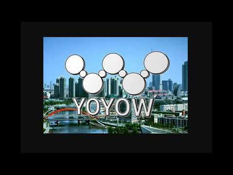 Что такое YOYOW ? Обзор проекта YOYOW
