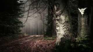 Zgard - Contemplation (Созерцание)
