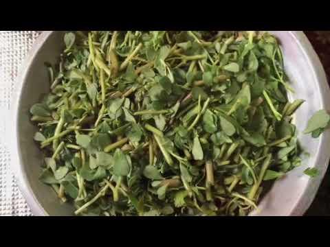 Kulfey Ki Katli Tasty Recipe, How to clean the kulfa To How to cook it All In One Video | Very Tast