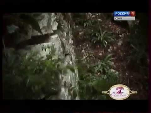 Истории Сочи - Хостинская крепость