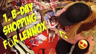 V-log !!! Shopping für Chihuahua