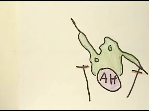Theory of Mind - Flickering Monsters - YouTube