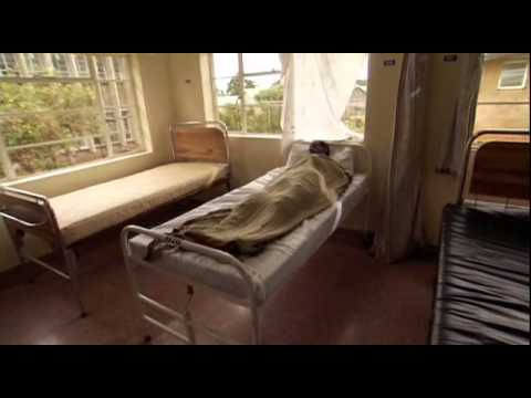 Documentary :  Disease Warriors DH