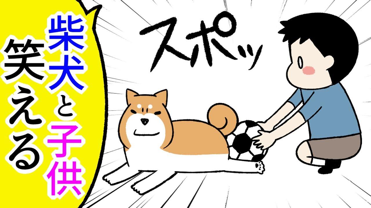 【犬まんが】ツッコミ不在!柴犬と子供のやりとりが面白すぎる