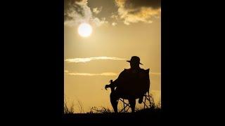 Never Felt So Lonely - Cato Sanden
