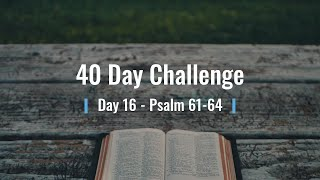 40 Day Challenge   Day 16   Psalm 61 64