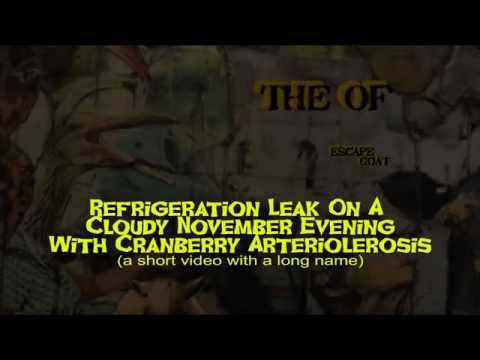 The OF - Refrigeration Leak (Official Video)