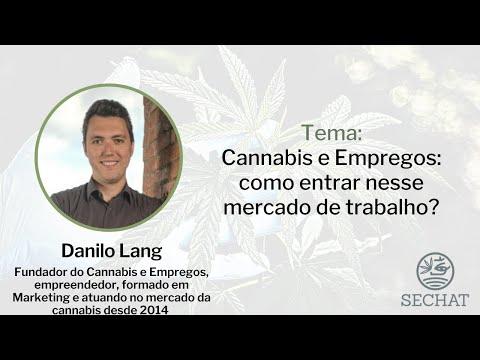 Cannabis e Empregos: como entrar nesse mercado de trabalho?