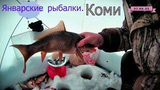Январские рыбалки КОМИ Наконец то РЫБА