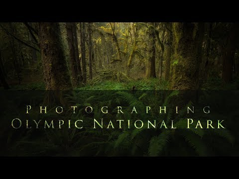 Photographing Olympic National Park.  Photographing Less of the Mess