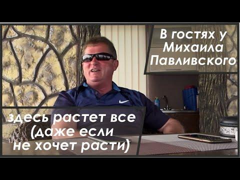 В гостях в фермерском хазяйстве Павливского
