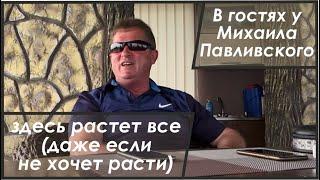 видео: В гостях У Михаила Павливского