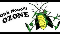 Pest Control Gold Canyon AZ: 3 Top Pests Of 2019 (480-493-5028) Ozone Pest Control