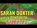 DOKTER MENYARANKAN RUTIN KONSUMSI RACIKAN INI UNTUK PENDERITA DIABETES   Obat Diabetes Paling Ampuh