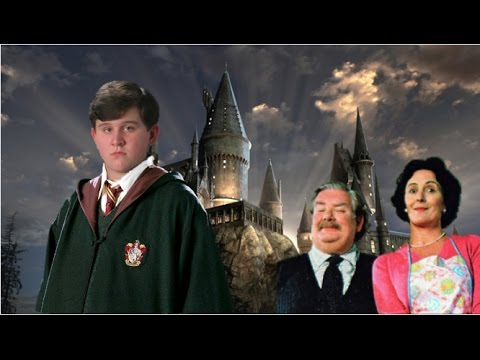 What If Dudley Dursley Was A Wizard?