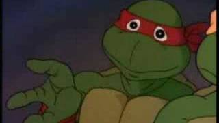 Teenage Mutant Ninja Turtles Bring Da Ruckus