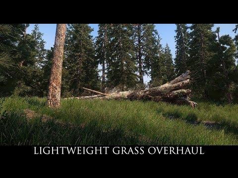 Skyrim SE Mods: Lightweight Grass Overhaul