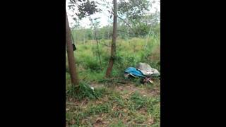 Download Video Toyota dyna 125 ht Ganti gardan fuso gawir MP3 3GP MP4