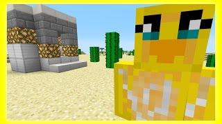 Minecraft PC - Feather Adventures :  Deserts & Acacia - {161}