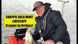 Bridges are #Crappie GOLD MINES! How to use #LIVESCOPE and catch them.