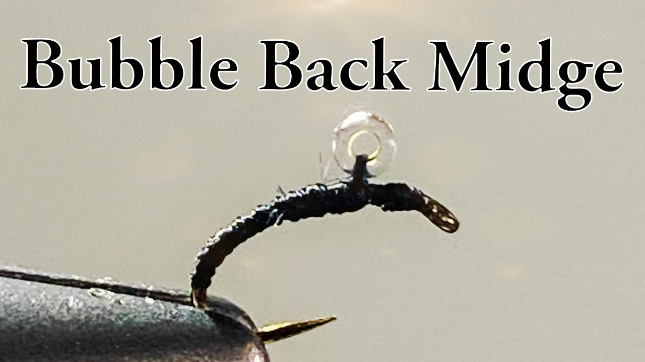 Bubble Back Midge