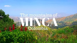 ASTONISHING Minca in the mountains of Colombia