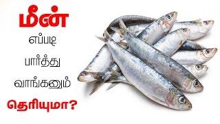 மீன் எப்படி  பார்த்து வாங்கனும் தெரியுமா? - ways to know you are buying a fresh fish