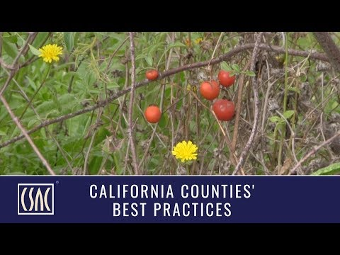 Best Practices: Los Angeles County's The Growing Experience