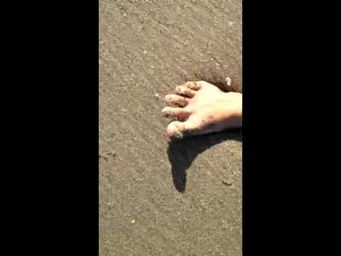 how to make quicksand at the beach