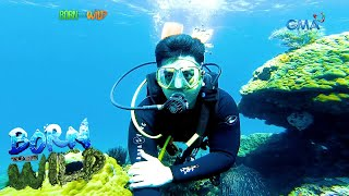 Born to be Wild: Underwater diving amid the New Normal