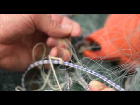 A Guide To Netting