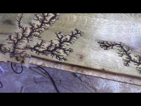 Oak Lichtenberg Figures